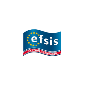 logo-26-efsis